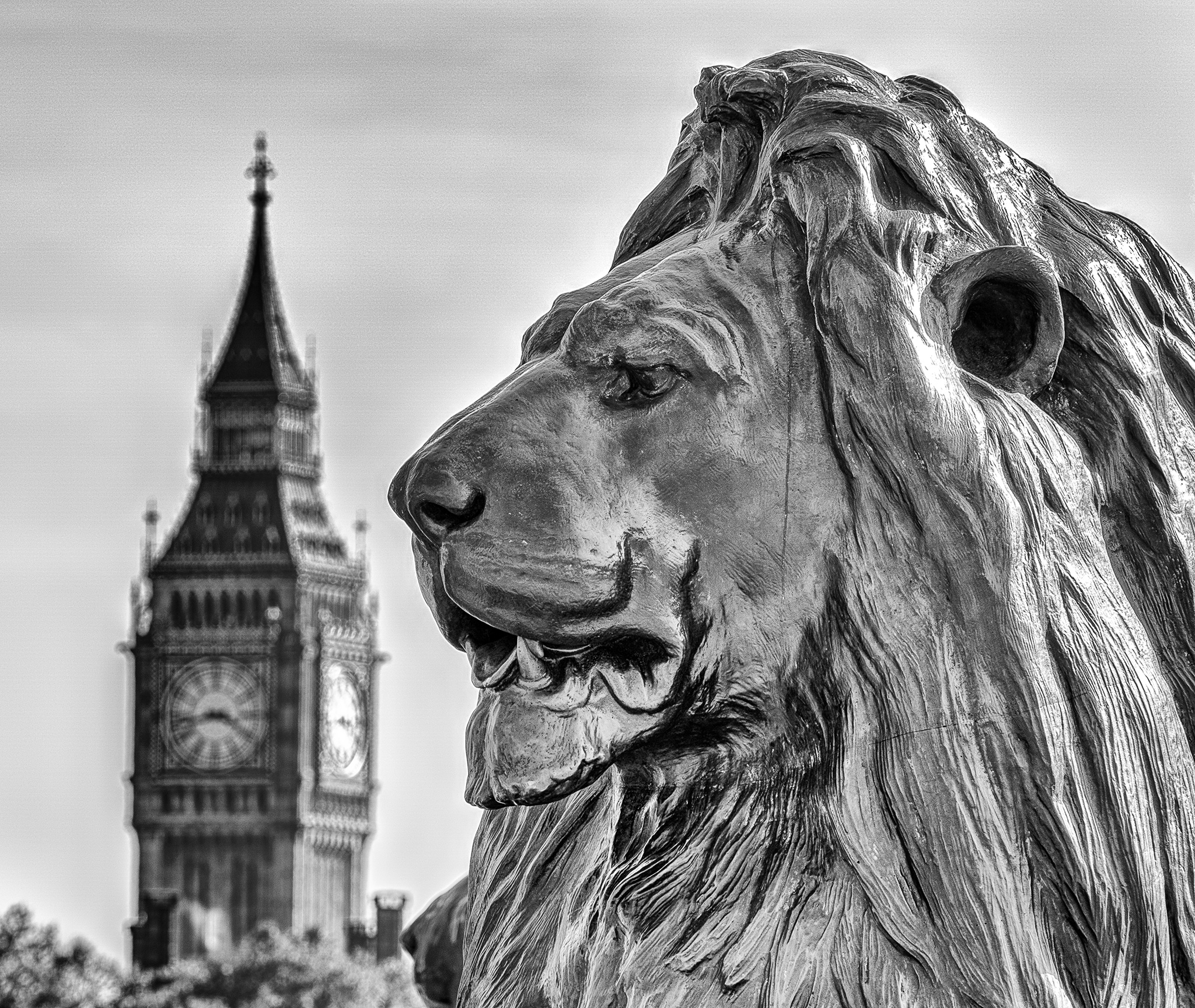 London Black and White Photos - Trafalgar Square Lion & Big Ben